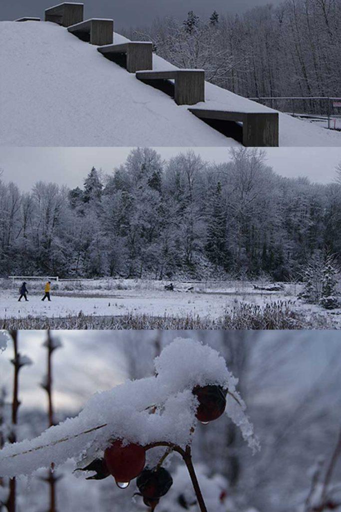 Vertical-portrait-Magnuson-Park-Snow-2