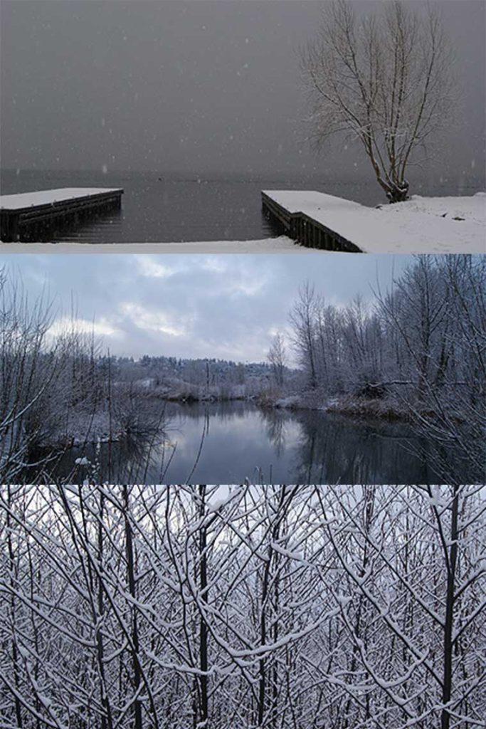 Vertical-portrait-Magnuson-Park-Snow