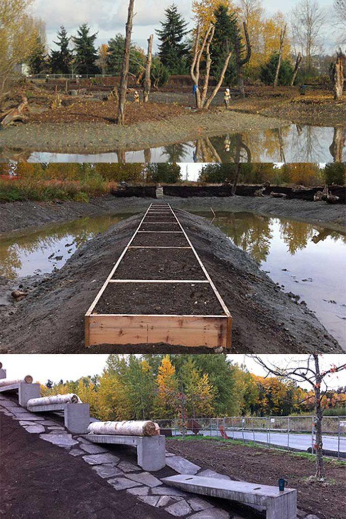 Vertical-portrait-Magnuson-Shore-Ponds-Construction