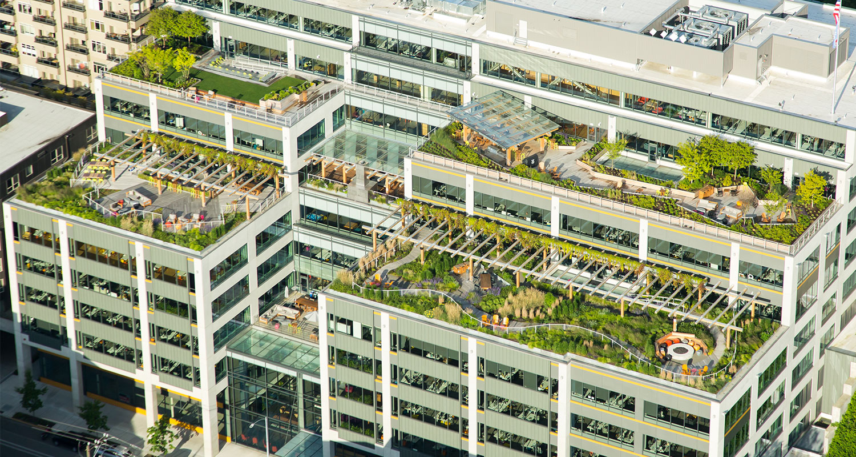 Dexter Station Roof Gardens