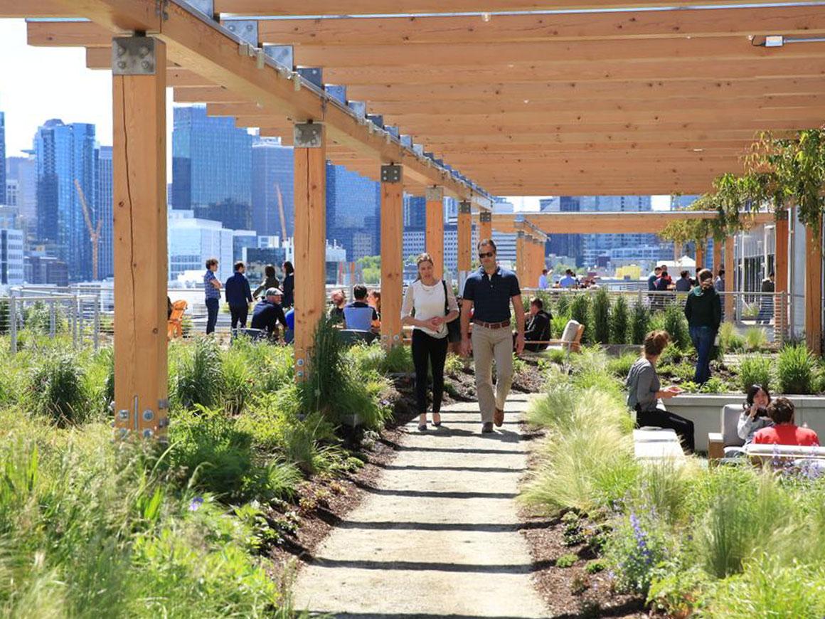 Facebook headquarters, Seattle, roof top garden, berger