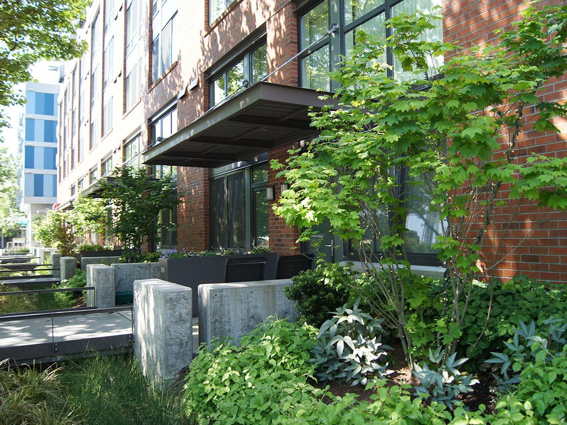 Expo Berger Partnership Landscape Architecture Garden Apartments Queen Anne