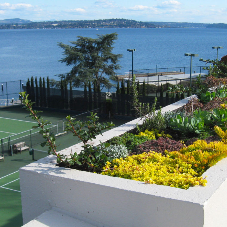 Seattle Tennis Club