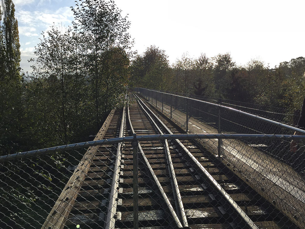 activities-section-sammamish-trestle-11